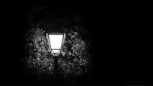 Wallpaper : fond d'écran : réverbère allumé dans les branches d'arbres
